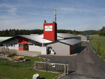 Gewerbeobjekt mit Büro- und Lagerfläche in Sulzbach-Rosenberg