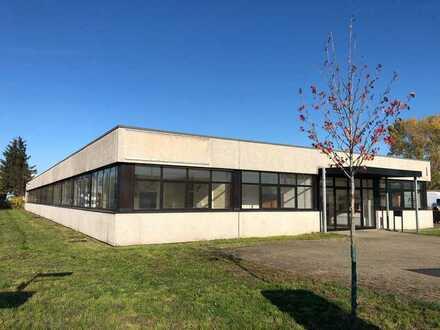 Teilbare Gewerbe/- Handelsfläche mit Büro in Langenbrücken zu vermieten !