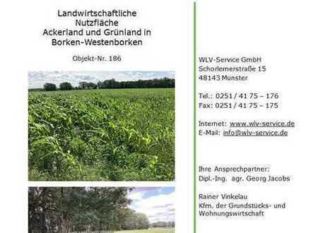 Ackerland und Grünland in Westenborken