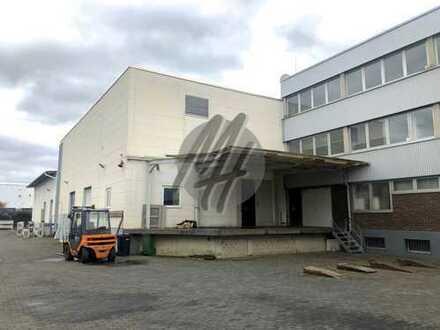 TOP-LAGE ✓ RAMPE + EBEN ✓ Lager (2.400 m²), Freilager (2.200 m²) & optional Büro zu vermieten