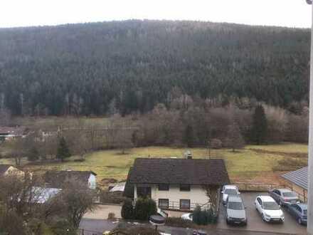 PROVISSIONSFREI in Bad Wildbad: Vollständig renovierte 1-Zimmer mit Balkon und EBK in Aussichtslage