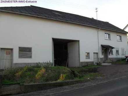 EFH Bauernhaus mit Stall und Scheune - Ruhige Lage