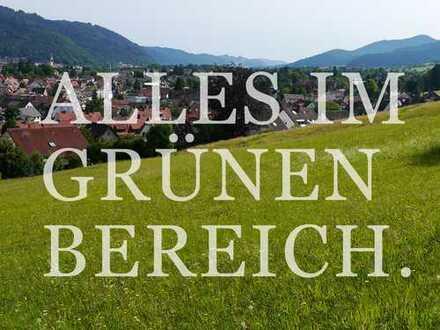 """Baugrundstück in Waldkirch """"Am Schänzle"""""""