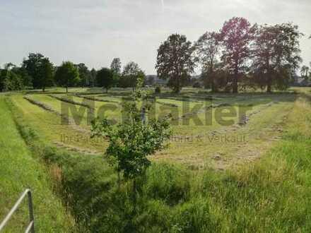 Grundstück mit ca. 4.575 m² als Weidefläche in Mettingen
