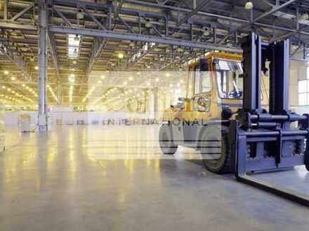 Logistik-/Lagerflächen mit Rampenandienung in Top Lage
