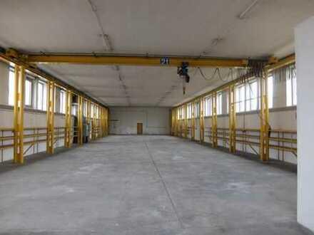 22_VH3451 Gewerbeanwesen mit Produktionshalle und Büro / Neutraubling