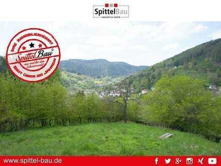 Sonniges Freizeitgrundstück mit Gartenhäuschen und herrlichem Schwarzwaldblick zu verkaufen!