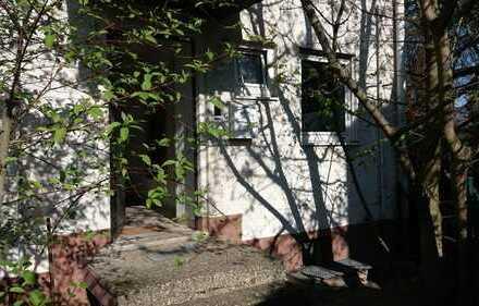 Für Student*Innen in Darmstadt- Dieburg! 18m² Zimmer in Ruhiger, liebevollen WG mit Hauskatzen!