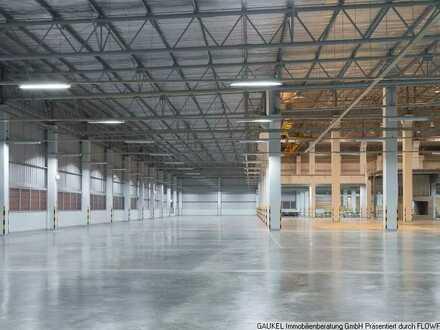 Flexibel nutzbare Lager-/Produktionshalle - mit großzügiger Freifläche!