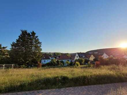 Blick auf Limburg, Flaggenturm und Pfälzerwald - Bad Dürkheim Neubaugebiet Fronhof II Platanenring