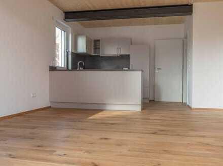 Erstbezug: Moderne 2-Zimmer-EG-Wohnung mit Einbauküche und Terrasse m. Garten in Wassertrüdingen