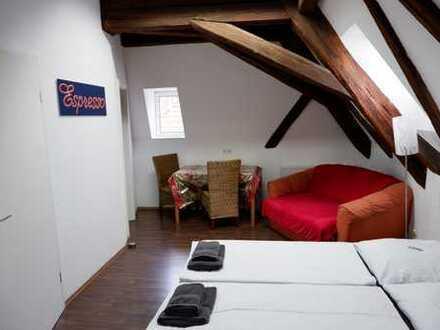 Renovierte, komplett möbilierte 1 Zimmer Wohnung mit Einbauküche in Calw- Zentrum, WM pauschal 850€