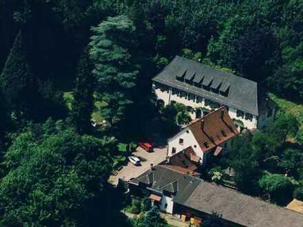 Schöne 1-Zimmer-DG-Wohnung, teilmöbliert mit Einbauküche in Ramberg