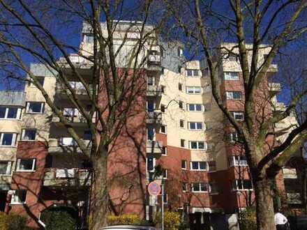 helles, modernes 1-Zimmer Apartment