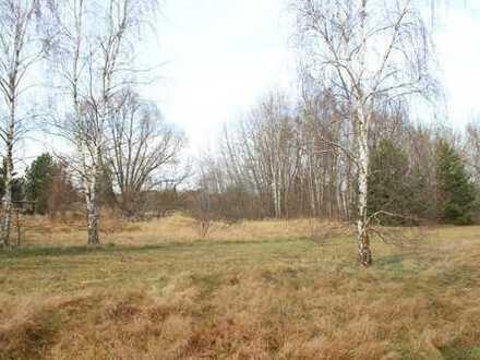 Sonnige, große Grundstücke mitten im OT Saalow +++ aufteilbar in Teilgrundstücke zu je 1500m²