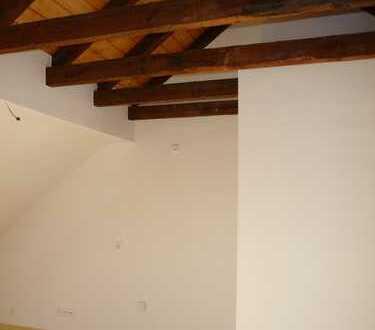 schöne modernisierte Wohnung - 2 Zimmer - offene Küche