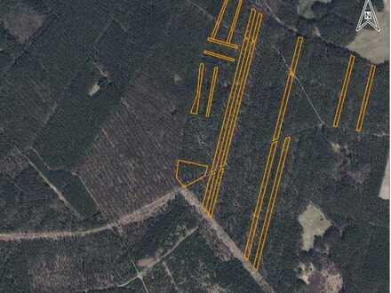 Forstflächen im Norden von Brandenburg