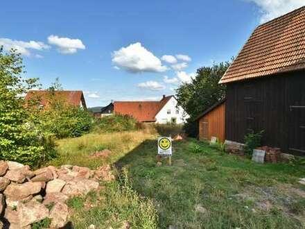 Calw-Altburg: Bauplatz mit Aussicht für Kenner