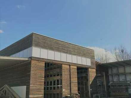 Produktions- und Lagerhalle (3) neben Traditionsbetrieb Ammann