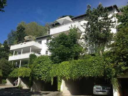Exklusive 3-Zimmer-EG-Wohnung mit Kamin und 3 Terrassen in Heidelberg