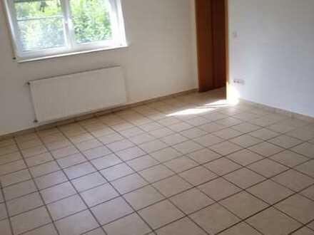 Sanierte Wohnung mit zwei Zimmern und Terrasse in Bischheim