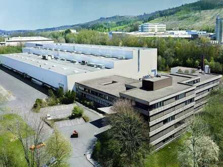 Moderne Büro- und Produktionsgebäude (Frei ab 01.01.2022)