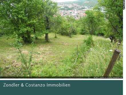 Schönes Gartengrundstück mit tollem Ausblick *Weinberghütte, Terrasse, Pkw-Stellplatz*