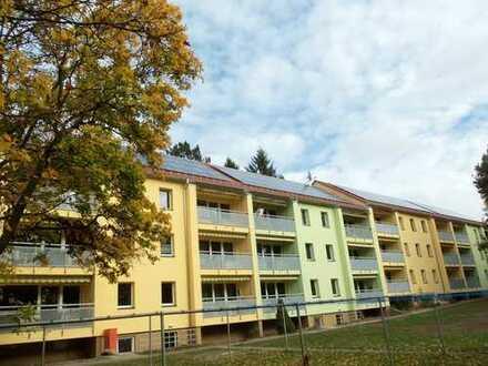 2-Raum-Wohnung mit ruhiger Lage im Grünen (Nähe Dresden)