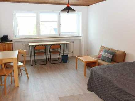 MEHR ALS NUR EIN ZIMMER- neu renovierte großzügige 1-Zimmer-Wohnung mit separater Küche