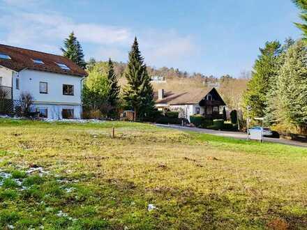 Traumhaft gelegenes Baugrundstück in Weisenheim am Berg!