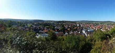 Großes Grundstück mit traumhafter Aussicht in Keltern-Ellmendingen