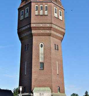 Auf Augenhöhe mit den Turmfalken ...