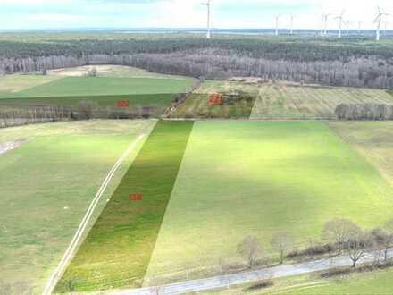 13,1 ha Grünland, Ackerland und Waldfläche bei Treuenbrietzen zu verkaufen