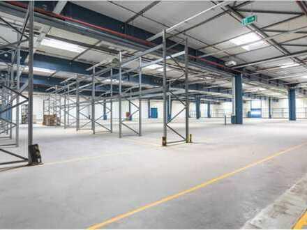 """""""BAUMÜLLER & CO."""" - ca. 2.000 m² Hallenfläche - ebenerdige Andienung"""