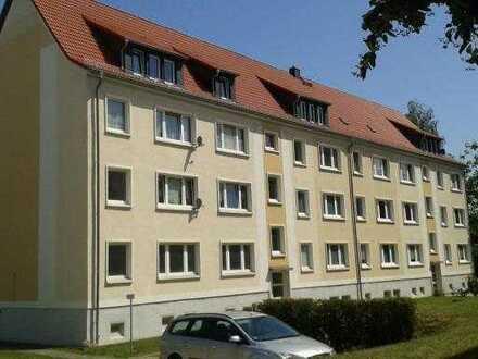 Helle und sonnige Dreizimmerwohnung neu zu vermieten - ruhiges und schönes Umfeld