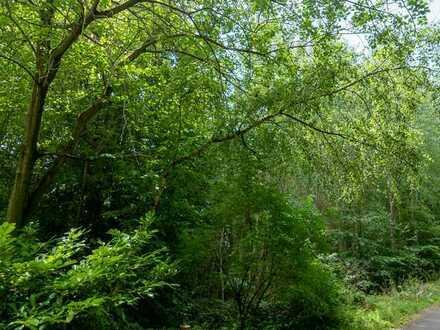 ruhiges 3000qm Baugrundstück von Wald umgeben in Stromberg-Schindeldorf