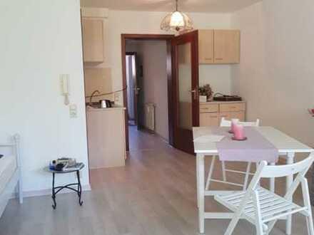 1-Zimmer Wohnung mit Single Küche im Untergeschoss, neu renoviert