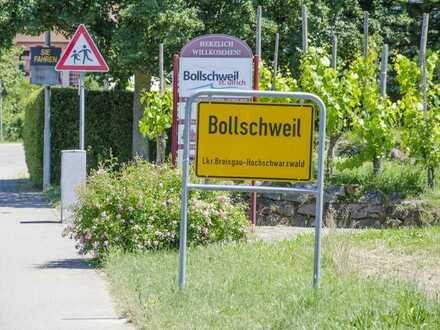 Leben in Bollschweil, nahe Freiburg I rechte Hausseite_Wohnen Nr. 2