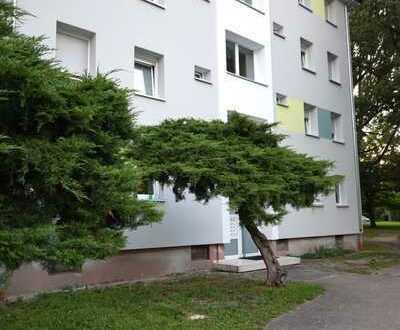 3,5-Zimmer-Wohnung mit ausgebauten Wintergarten in Offenbach-Buchhügel