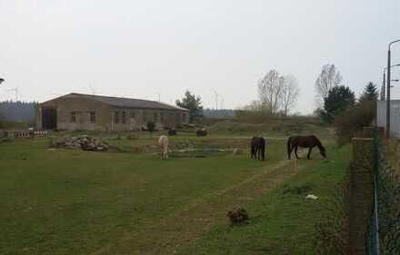 Grundstück mit Pferdekoppel