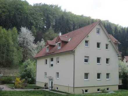 Helle 4-Zimmer-Maisonette-Whg. mit Süd-West-Balkon zu vermieten