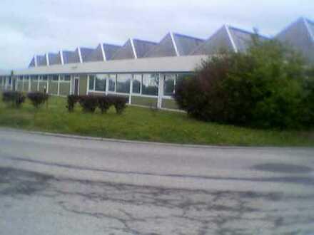 71287 Weissach Industriehalle/Lagerhalle, Büro, Sozialräume, Freifläche