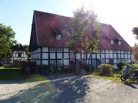 Großes kernsaniertes Bauernhaus (Denkmalschutz) Teil eines Resthofes mit 10 Wohneinheiten