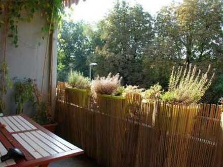 Schönes sonniges Zimmer und große Gemeinschaftsräume zu vermieten