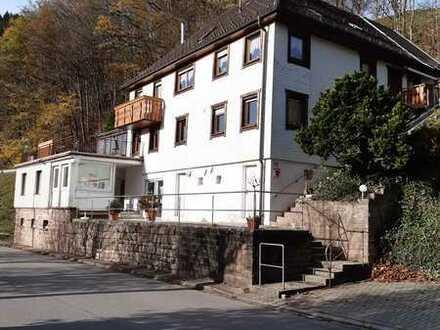 Sonnige 3-Zimmer-Wohnung mit 32 qm großer Terrasse und Wintergarten in Bad Peterstal-Griesbach