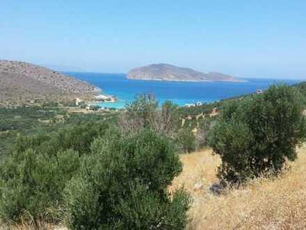 Bauland (4093 m2) mit Meerblick in der Nähe von Kavousi, Tholos, Kreta