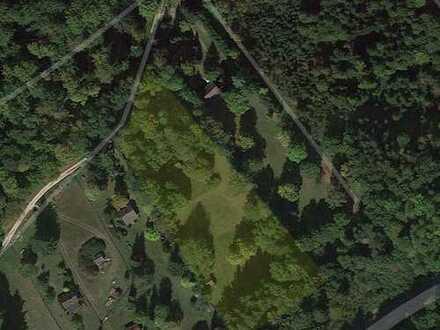 Parkähnliches 8.300qm Grundstück mit Wochenendhaus