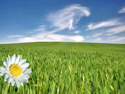 Ideal für Mid-/ Bestager! sonniges, erschlossenes, unbebautes Grundstück in ruhiger Lage