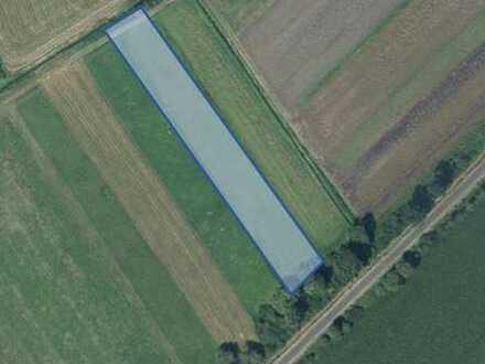 Landwirtschaftliche Flächen bei Brunnen / SOB