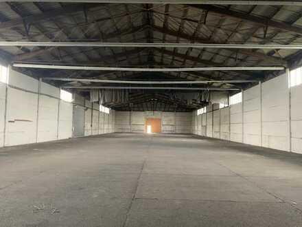 TOP-Lagerfläche in großzügiger massiv gebauter Halle!